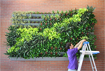 A Green Wall Or U201cLiving Wallu201d Is A Vertical Planting That Is Attached To A  Wall. Green Walls Add Tremendous Beauty And Positive Health Benefits To  Your ...