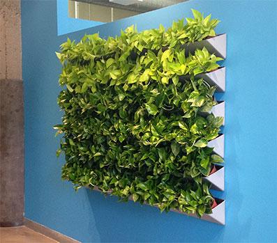 Plantscape Inc.